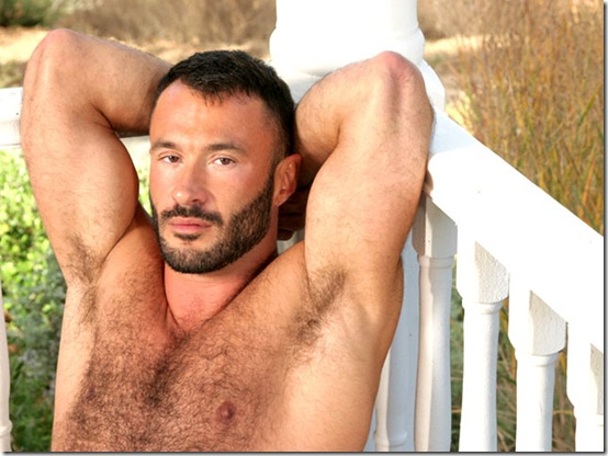 hairyboyz-wilfried-knight-solo
